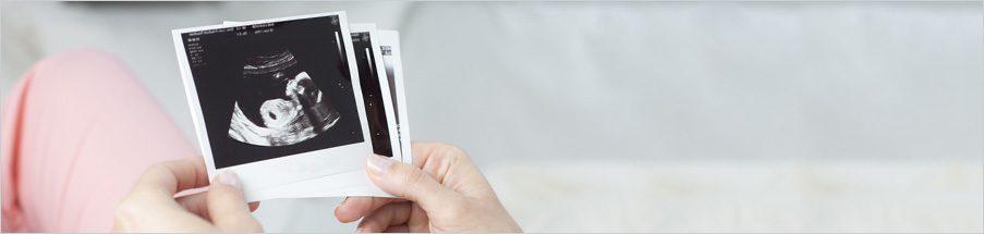 Schwangerschaftswochen Guide