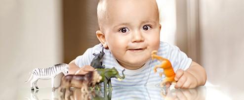 Baby spielt mit Tierfiguren